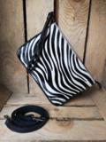 klein zebra